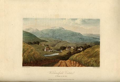 Williamsfield Estate, St. Thomas in the Vale